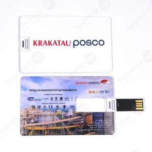 USB Kartu FDCD04