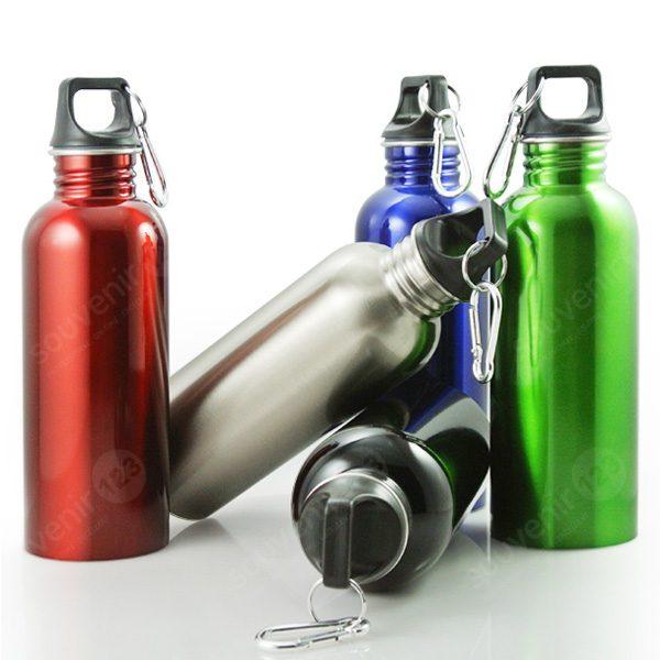 Ventura Plus Stainless Bottle