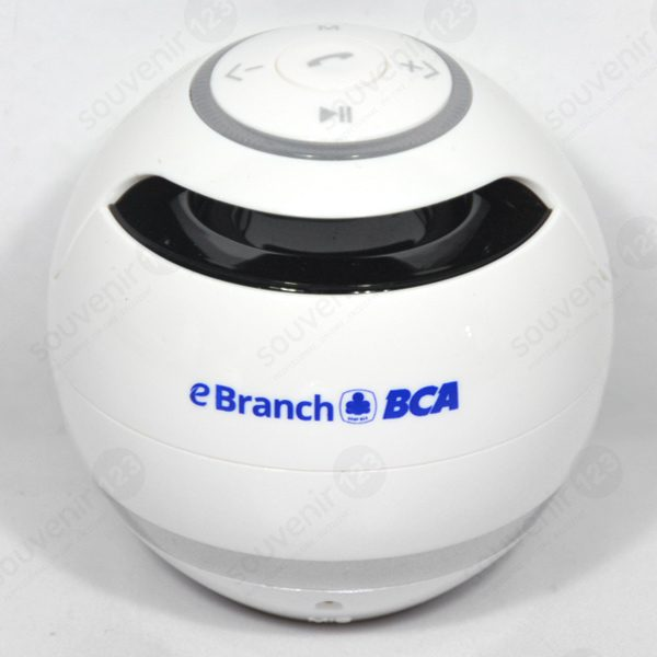 Speaker Bluetooth BTSPK01