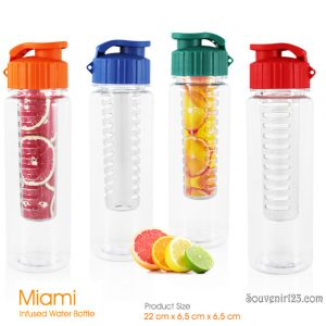 Miami Sports Bottle + Infuser
