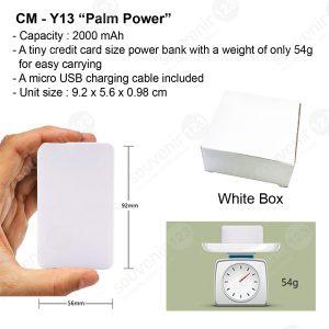 Powerbank Palm Power 2000mAh CMY13